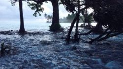 flooding caused by climate change in the Pacific Island States