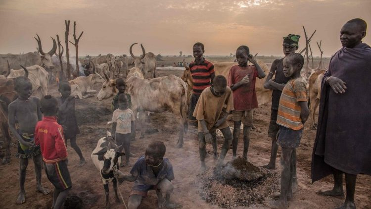 topshot-ssudan-cattle-droving-1520610790288.jpg