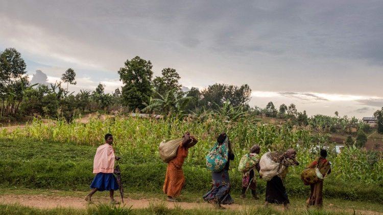 Un sacerdote ha sido secuestrado el domingo de Pascua en el este de la República Democrática del Congo