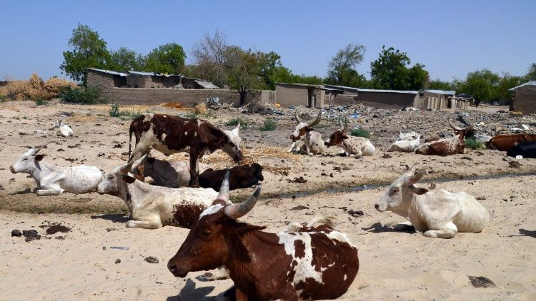 FILES-NIGERIA-SAHEL-AGRICULTURE-DROUGHT-UNREST