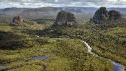 Hacia el Sínodo Especial para la Amazonía: dimensión regional y universal