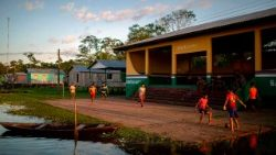 brazil-amazon-rainforest-inhabitants-1534385201393.jpg