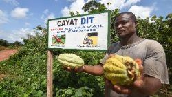 A cocoa farmer of an agricultural cooperative in Ivory Coast saying it is child-labour free.