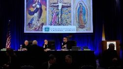 US Bishops begin discussion of sexual abuse crisis