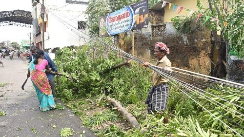 The aftermath of Cyclone Gaja in Tamil Nadu state, India.
