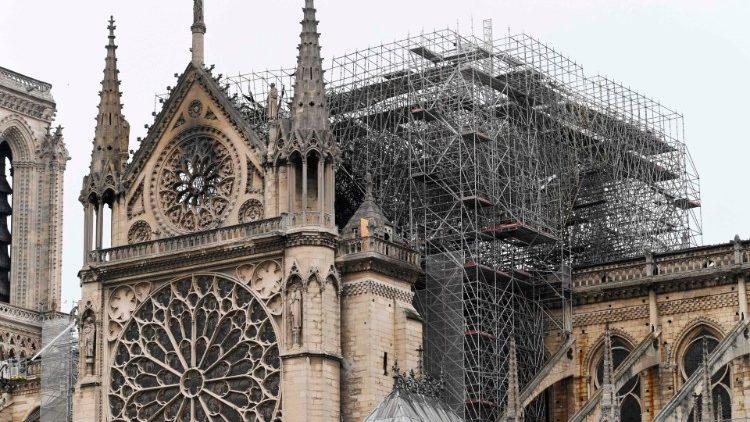 Phản ứng của Tòa Thánh về vụ cháy Nhà Thờ Đức Bà Paris