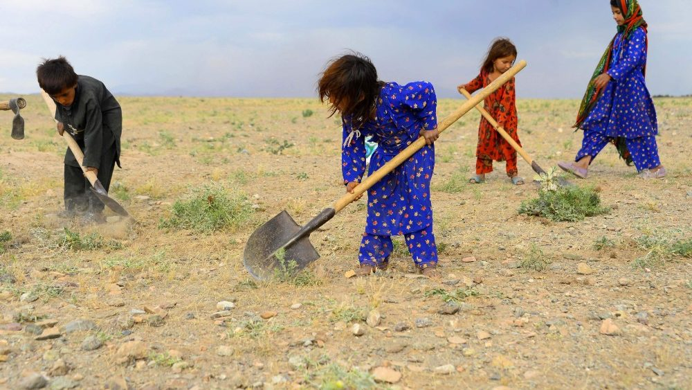 topshot-afghanistan-economy-labour-1558269839096.jpg