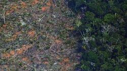 FILE PHOTO: Aerial photo of a deforested portion of Amazon rainforest due to fires