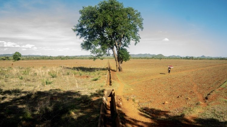 Climate change adversely affecting countries in southern Africa