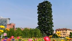 "A view from Milan's botanical park ""Library of Trees"""