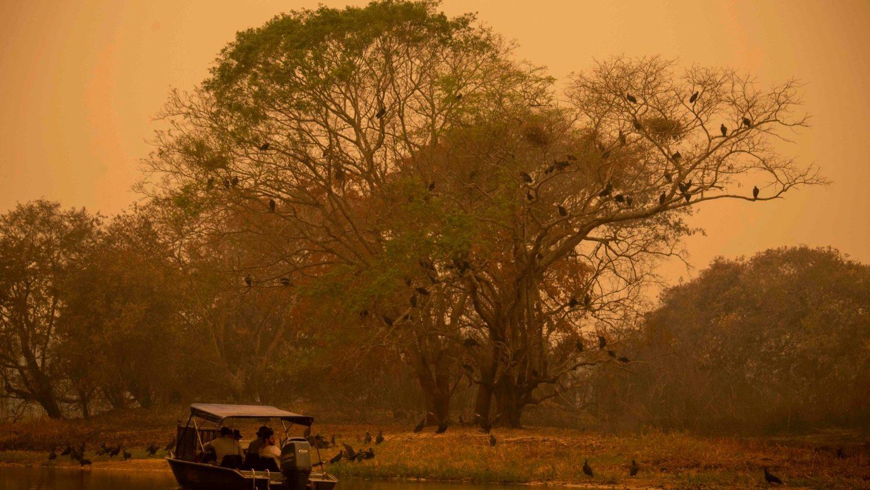 El desastre ecológico en curso en Brasil - Vatican News