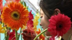 flower-show-in-jammu-1520603293117.jpg