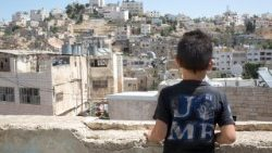 8 year-old Hamid looks over Hebron, his city, now punctuated by check-points