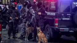 Venezuelan security forces stand guard after an explosion targeted President Nicolas Maduro