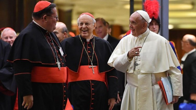 synodal-meeting-at-the-vatican-1538591012300.jpg