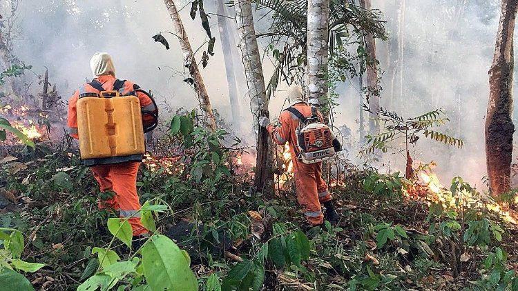ブラジル・ロンドニア州・ポルトベリョでの森林火災 2019年8月22日