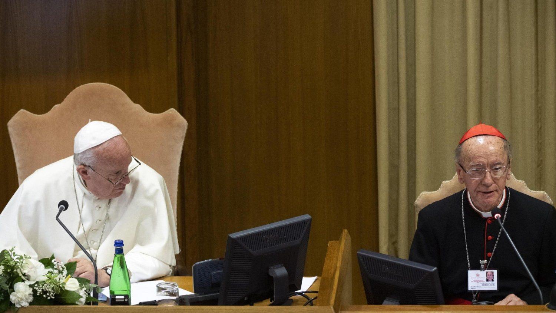 Cardeal Hummes: Querida Amazonia traz repercussão local, mas ...