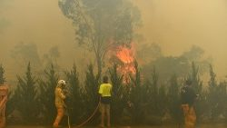 Recent bushfires in New South Wales