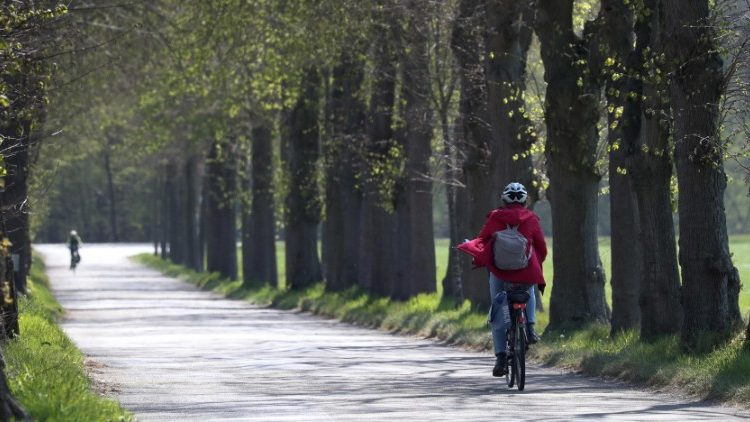 Cyclists enjoy a deserted, sunny avenue near Bramsche, Germany