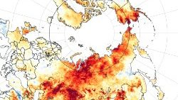 A NASA satellite image showing land surface temperatures in Siberia.