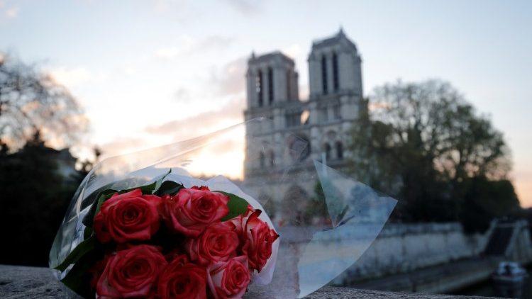 Otra imagen de la Catedral Notre Dame de París