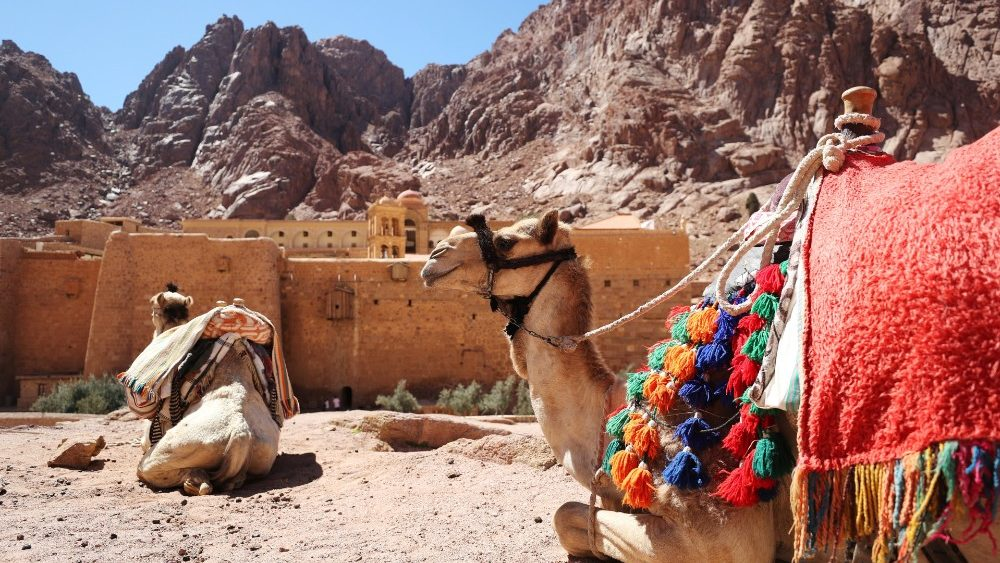 st--catherine-s-monastery-in-south-sinai-1555498744872.JPG