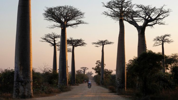 MADAGASCAR-ENVIRONMENT/