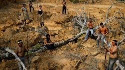 Mura indigenous people show a deforested area in indigenous lands in Brazil's Amazon rainforest near Humaita.