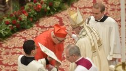 Pope Francis creates 14 new Cardinals