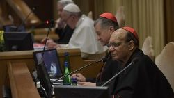 Cardinal Gracias in the Vatican's Synod Hall