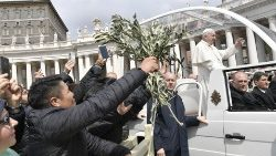 Pope Francis following the Angelus