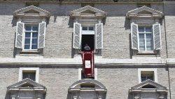 Pope's Angelus of 30 June 2019