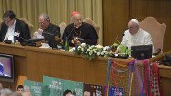 Papa na Sala Sinodal