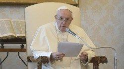 教宗主持公开接见活动