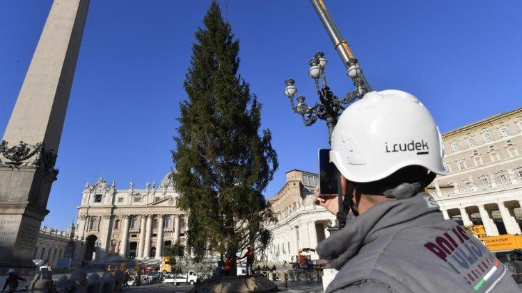 Cerimônia de inauguração e iluminação acontece em 11 de dezembro