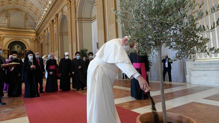 Le Pape François versant de la terre à un olivier qui sera planté symboliquement, le 4 octobre 2021.
