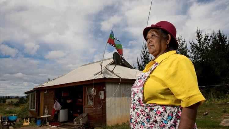 Mulher Mapuche