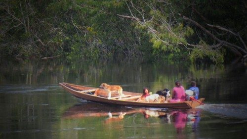 Indigenous people on the Rio Negro in the Amazon rainforest