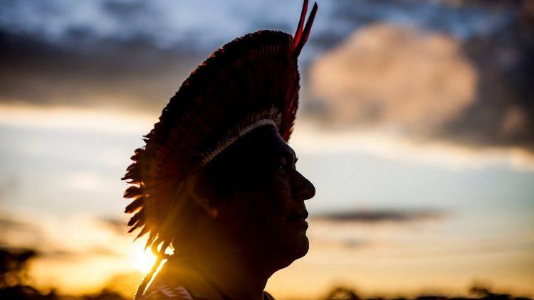 Amazonia asamblea sínodo Seminario eclesial