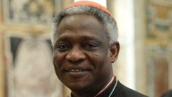 Cardinal Peter Turkson, Prefect of the Dicastery for Promoting Integral Human Development