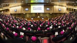 Young People Participate in Synodal Process