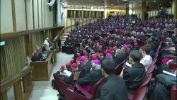 Pope Francis and bishops gathered in the Synod Hall