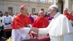 Sínodo, Cardenal Stella: el celibato sacerdotal como don para cultivar y difundir