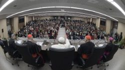Pope at Pre-Synodal Meeting: Young people must be taken seriously