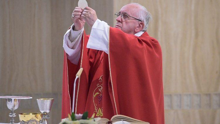 Em homilia, Papa reflete sobre evangelização