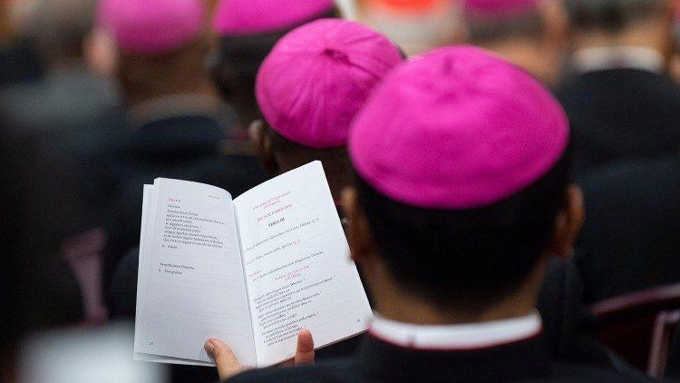 Deutschsprachige Synodenväter Ziehen Erstes Resümee Vatican News