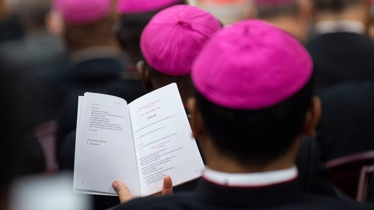 Some Bishops at the Synod