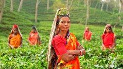 Erradicar el hambre en el mundo para el 2030, es posible
