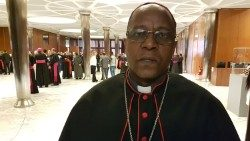 Bishop Joseph Sephamola O.M.I., of Qacha's Nek Diocese at the Synod