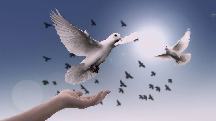 O 52ª Dia Mundial da Paz será celebrado em 1° de janeiro de 2019